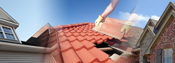residental roof services - green roof designs
